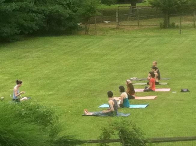 yoga field
