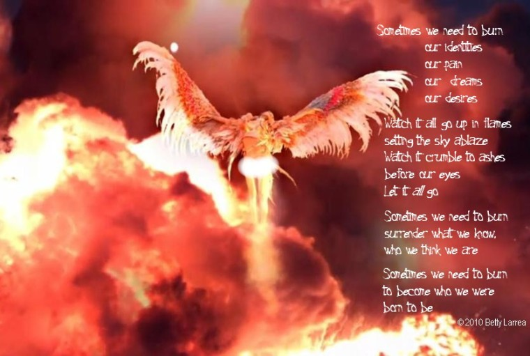 phoenix burn poem
