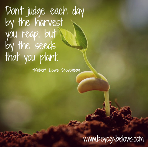 little sprout stevenson quote